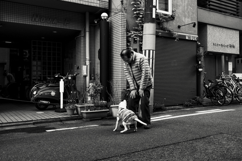 Hiiragiya Bekkan - Street, Staff and Dog | George Nobechi