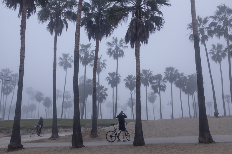 Bicyclists in Fog, Venice CA