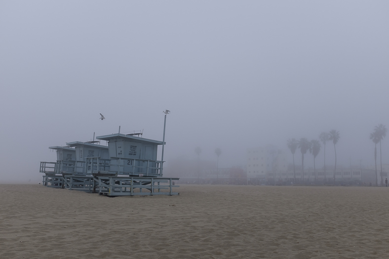 Gulls and Lifeguard Towers in Fog, Venice CA
